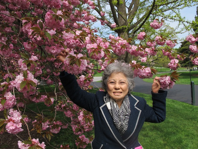 Shigeko Sasamori at the New York Botanical Garden, April, 2013