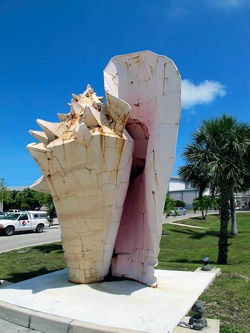 Key West High School symbol – the conch